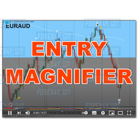 ENTRY MAGNIFIER